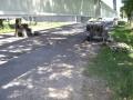 26-juin-2011-011-depose-des-camarteaux-800x600