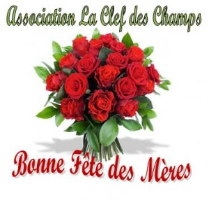 Assoc clef deschamps roses2014