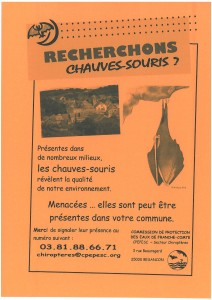 Affiche CHIROPTERES